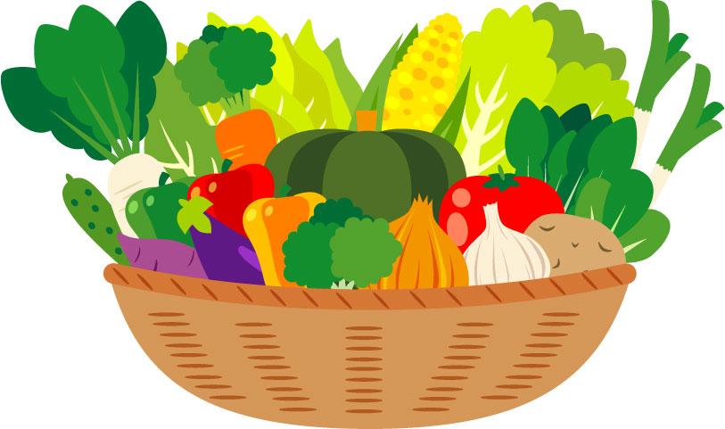 野菜置き換えダイエット6つの法則を1か月実践し3.5キロ痩せた